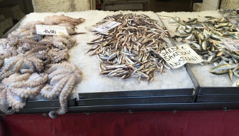 rialto-fish